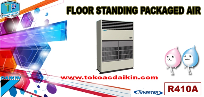 FLOOR STANDING PACKAGED AIR